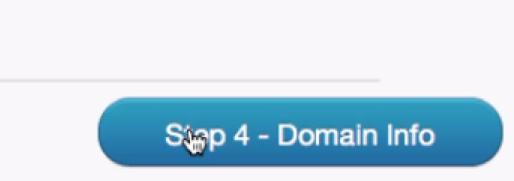 Step4 - Domain Info をクリック