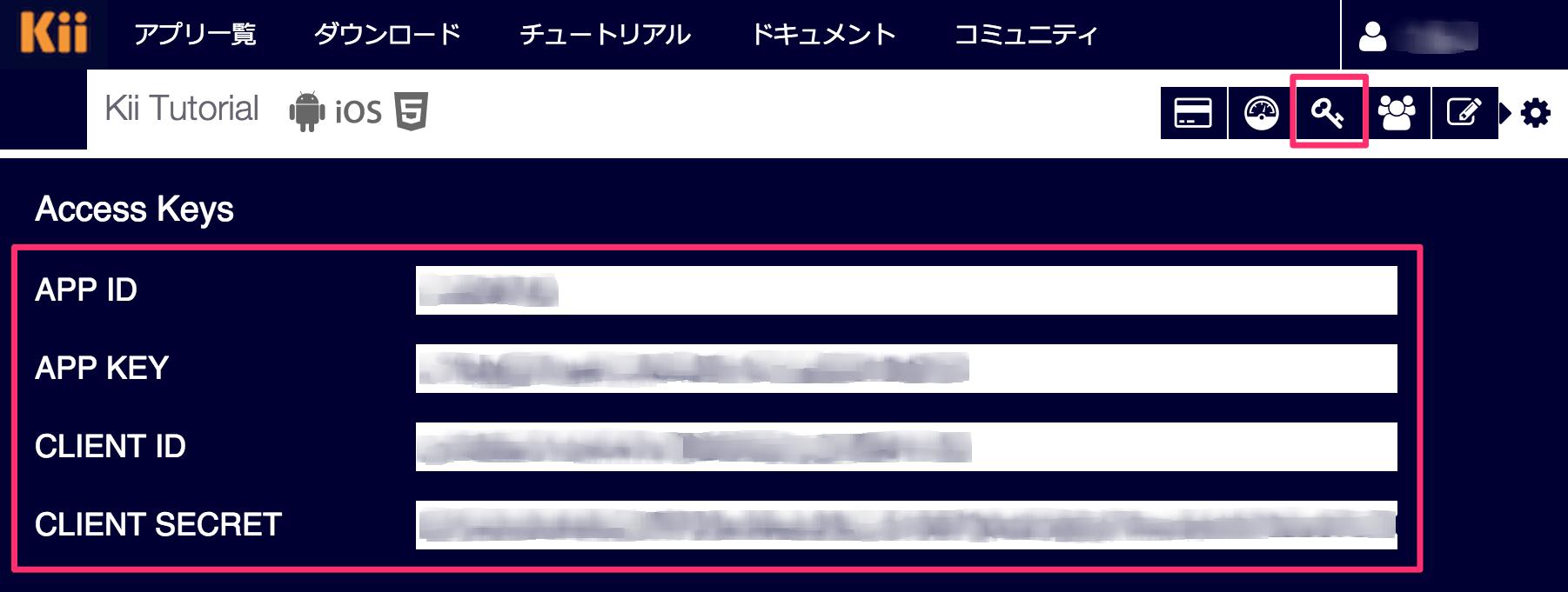 Kii Access Keys画面